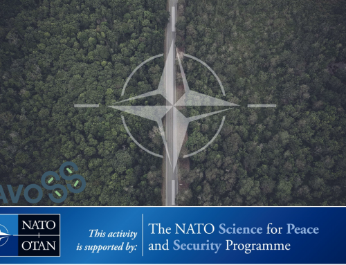 Dynamic Architecture based on UAVs mOnitoring for border Security and Safety (DAVOSS)